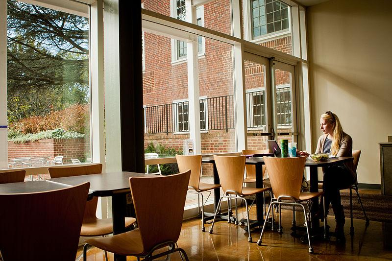 800px-Studying_at_Washington_College