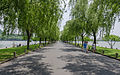 Su Causeway near West Lake, looking towards north 20120529 1.jpg