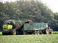Sugar beet harvest - geograph.org.uk - 566296.jpg
