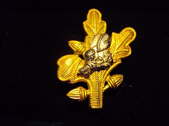 Navy Supply Corps - WWII Naval Officers from the Civil Engineer Corps, Medical Corps, Dental Corps and Supply Corps assigned to Naval Construction Battalions had a Silver Seabee on their Corps insignia.