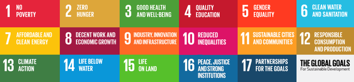 Sustainable Development Goals text only.png