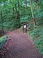 Svatý Jan pod Skalou, lesní stezka.jpg