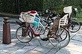 TOKYO ELECTRIC BIKE FOR TWO KIDS.jpg
