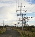 Tatton Road pylons, Newport - geograph.org.uk - 1586477.jpg