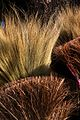 Thailand Brooms for Sale (1855344046).jpg