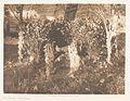 The Altar - Cheyenne LACMA AC1997.271.56.jpg
