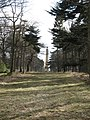 The Obelisk, Bramham Park - geograph.org.uk - 722141.jpg