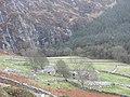 The abandoned Ty Uchaf Farm - geograph.org.uk - 632889.jpg