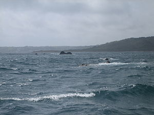 The Manacles - The Manacles (Carn-du and Moen Voes) looking south west towards Coverack