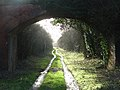 The old railway near Litchfield - geograph.org.uk - 306312.jpg