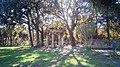 Tholos del Tempio Dorico di Pompei.jpg