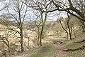 Thursden Valley - geograph.org.uk - 1224344.jpg