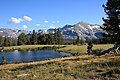 Tioga Pass meadow lake Kuna Crest.jpg