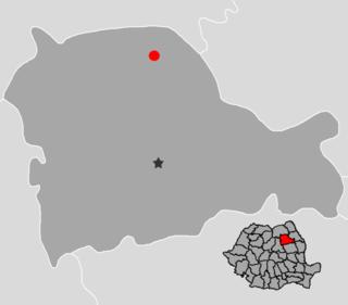 Târgu Neamț Town in Neamț County, Romania