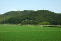 Toishi Castle.jpg