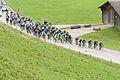 Tour de Romandie 2013 - étape4 - peloton début du col des Mosses (3).jpg