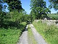 Track behind Falcon Inn - geograph.org.uk - 1371664.jpg