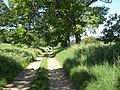 Track from Bircham Newton drops into Fring - geograph.org.uk - 453087.jpg