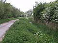 Track near Henridge Hill - geograph.org.uk - 426332.jpg