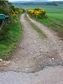 Track to Benthoul Farm - geograph.org.uk - 662120.jpg