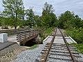 Tracks, WOW Trail, Laconia NH.jpg