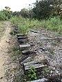 Tracks At The Ghost Bridge of Amish Village in Sarasota, Florida.jpg