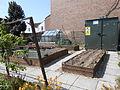 Trafalgar Road community garden, Wallasey.JPG