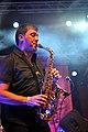 Transglobal Underground Fanfare Tirana Horizonte 2015 5349.jpg