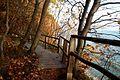 Treppe am Königsstuhl im Nationalpark Jasmund.jpg
