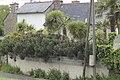 Treveneuc- Rue du Port-Goret.jpg