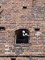 Tribsees Mühlentor 2014-05-25 245.JPG
