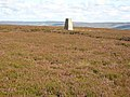 Trig pillar on Five Pikes - geograph.org.uk - 510450.jpg