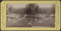 Trout Ponds, Annin's Grove, Caledonia, N.Y, from Robert N. Dennis collection of stereoscopic views.png