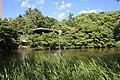 Tsuruma Park Akinoike Pond 20170527-01.jpg