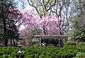 Tudor Place in April (17113876883).jpg