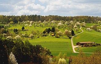 Orchard - Image: Tuebingen Streuobstwiese