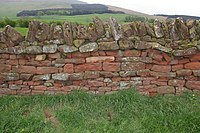 Typical local red sandstone wall - geograph.org.uk - 228300.jpg