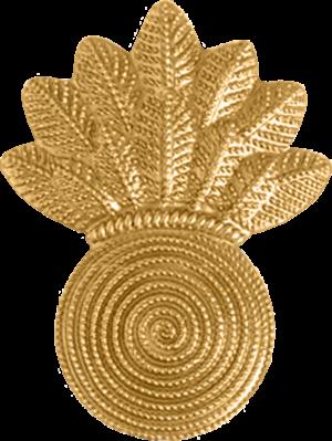 United States Marine Corps rank insignia - Image: USMC CWO Gunner (Dress)