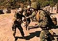 US Navy 110814-N-DG226-067 SQuick Shot participants practice weapons retention maneuvers.jpg