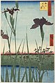 Utagawa Hiroshige I, published by Uoya Eikichi - Horikiri Iris Garden (Horikiri no hanashōbu), from the series One Hundred Famous Views of Edo (Meish... - Google Art Project.jpg