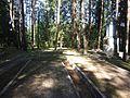 Utena, Lithuania - panoramio (50).jpg