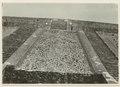 Utgrävningar i Teotihuacan (1932) - SMVK - 0307.a.0028.tif