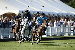 Polo - Two players disputing the ball in a polo match.
