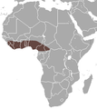 Veldkamp's Dwarf Epauletted Fruit Bat area.png