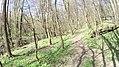 Verőce, 2621 Hungary - panoramio (75).jpg
