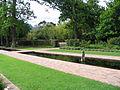 Vergelegen Reflection Garden 1.JPG