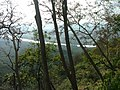 View of the Ganges from the forest above Rishikesh.jpg