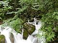Vrelo river (spring).JPG