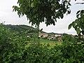Vue de l'église de Saint-Sorlin-de-Morestel entre des feuillages.JPG
