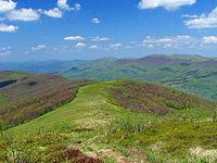 Waldkarpaten Bieszczady 1.jpg